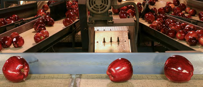 Technologie maakt de voedselketen duurzamer