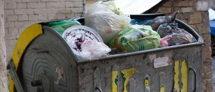 60% van de geproduceerde biomassa wordt verspild