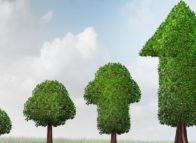 Aantal snelgroeiende bedrijven omhoog