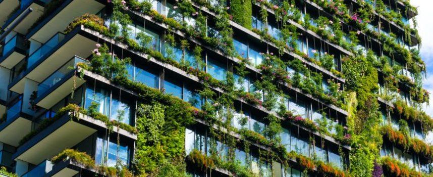 Het belang van stedelijk groen
