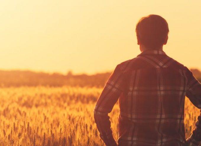 Meer boeren met eigen land
