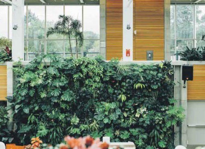'De impact van gebouwen op ons welzijn is enorm'
