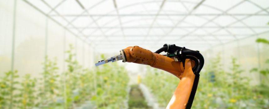 De invloed van automatisering op de arbeidsmarkt