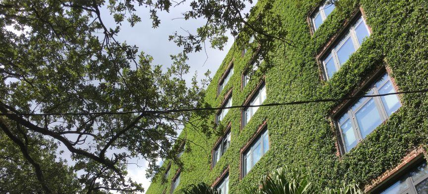 Gezonde gebouwen hebben de toekomst