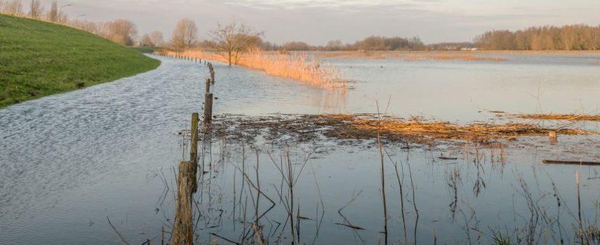 Het belang van intensieve monitoring van rivieren