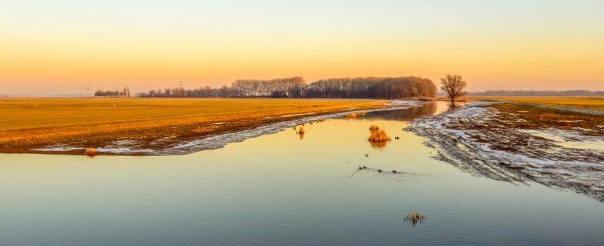 Het belang van drasland voor de agrarische sector