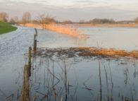 Waterschapsheffingen stijgen dit jaar harder dan 2017