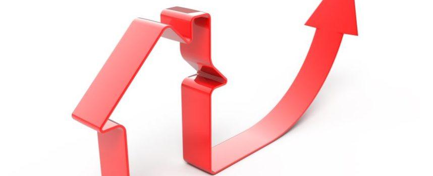 Leg rode loper uit voor particuliere vastgoedbelegger